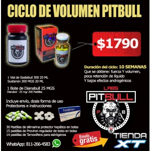CICLO DE Volumen PITBULL